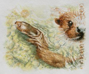 Otter clawback