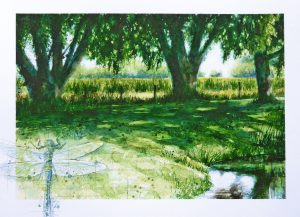 Summer pond – SOLD