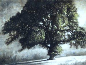 West Melbury oak (1825)