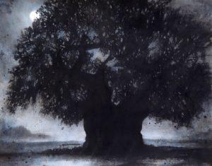 Silton oak (1018)