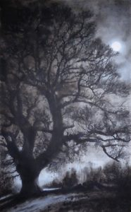 Moonlit Donhead oak (1588)