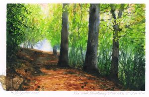 1058: Pine Walk autumn