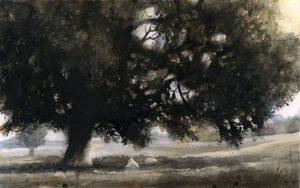 Daylesford oak (1520) SOLD