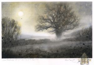 326: Gascoigne oak