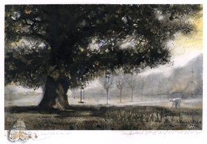 326: Daylesford oak (1620) SOLD