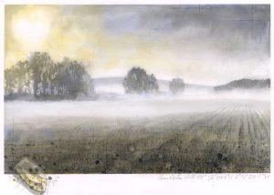 Field fog SOLD