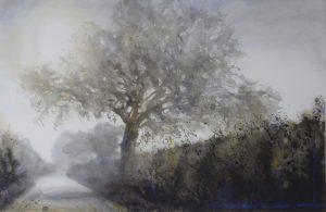 High summer mist